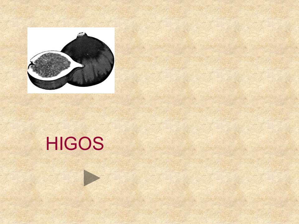 HI LOS ELO JOS GOS