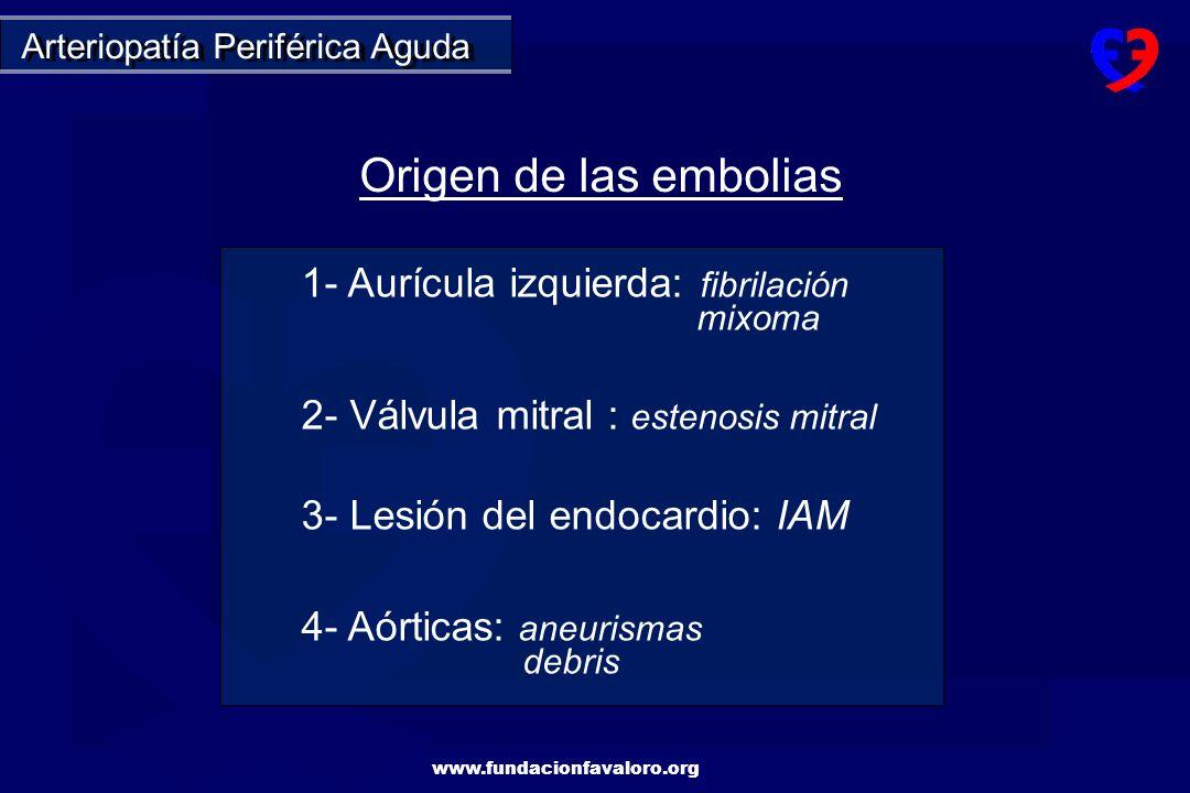 www.fundacionfavaloro.org Ptes.