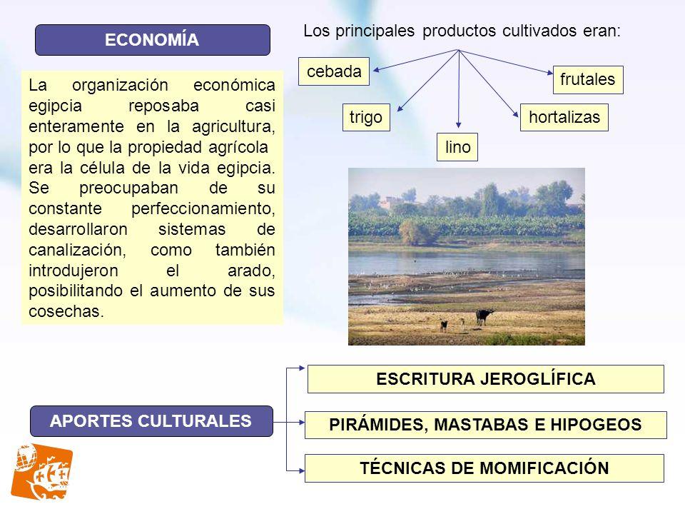 ECONOMÍA APORTES CULTURALES Los principales productos cultivados eran: cebada trigo lino hortalizas frutales ESCRITURA JEROGLÍFICA PIRÁMIDES, MASTABAS