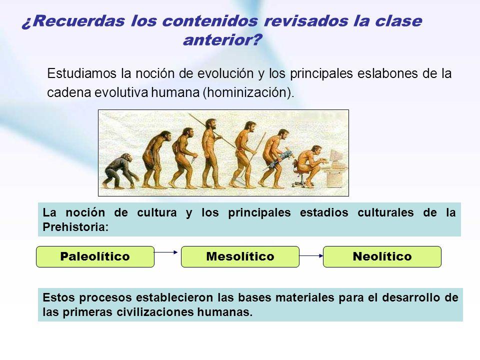 ¿Recuerdas los contenidos revisados la clase anterior? Estudiamos la noción de evolución y los principales eslabones de la cadena evolutiva humana (ho