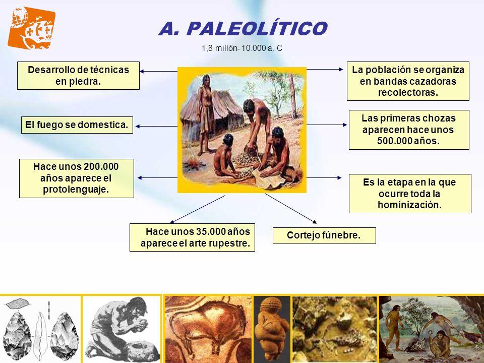 A. PALEOLÍTICO Desarrollo de técnicas en piedra. Es la etapa en la que ocurre toda la hominización. La población se organiza en bandas cazadoras recol