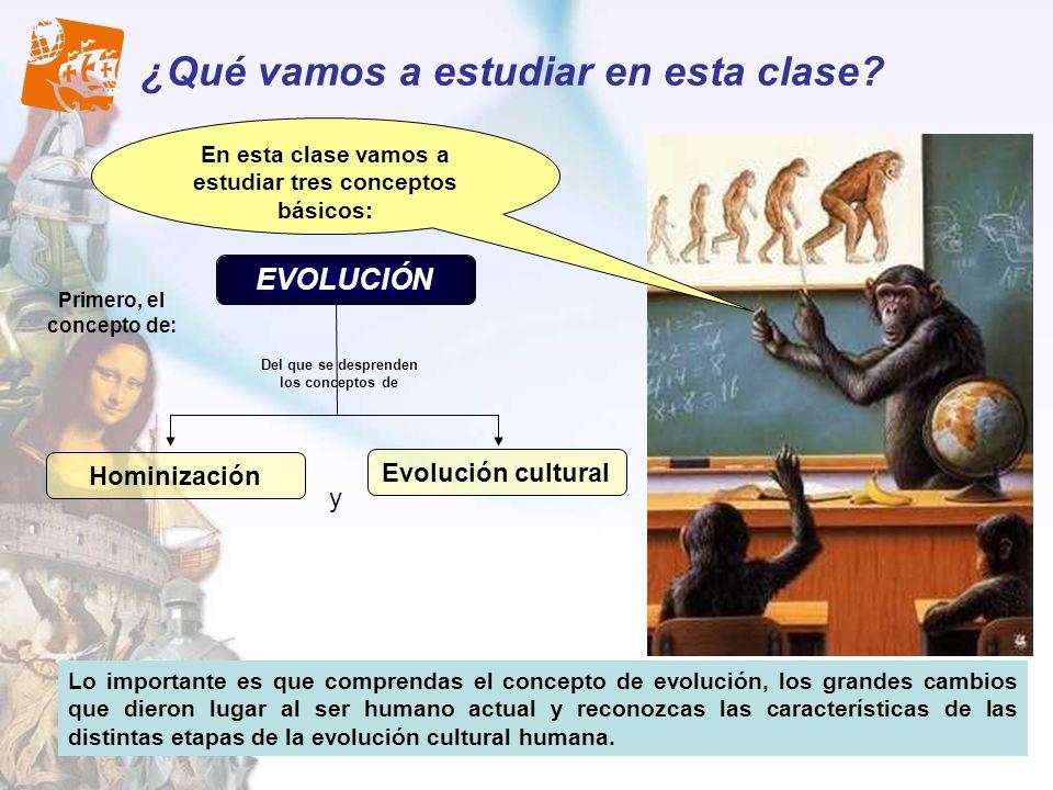 ¿Qué vamos a estudiar en esta clase? Lo importante es que comprendas el concepto de evolución, los grandes cambios que dieron lugar al ser humano actu