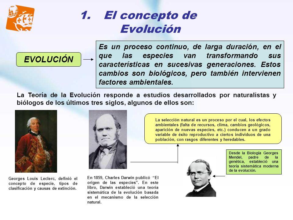 1.El concepto de Evolución Es un proceso continuo, de larga duración, en el que las especies van transformando sus características en sucesivas genera