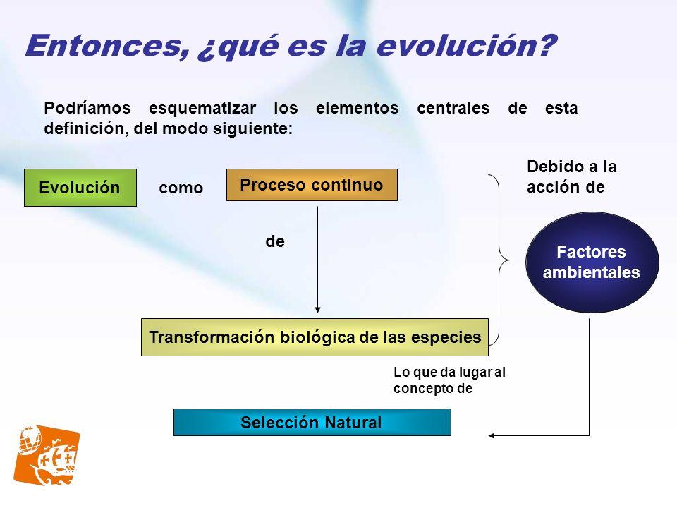 Entonces, ¿qué es la evolución? Podríamos esquematizar los elementos centrales de esta definición, del modo siguiente: Proceso continuo Evolución como