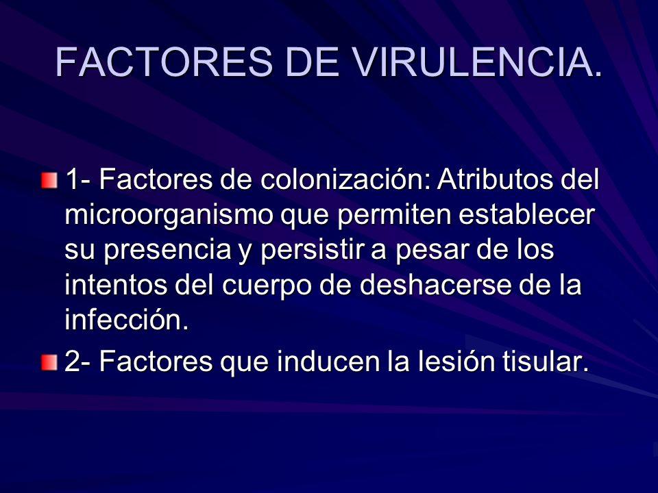 FACTORES DE VIRULENCIA. 1- Factores de colonización: Atributos del microorganismo que permiten establecer su presencia y persistir a pesar de los inte