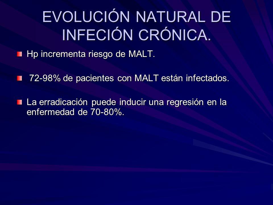 EVOLUCIÓN NATURAL DE INFECIÓN CRÓNICA. Hp incrementa riesgo de MALT. 72-98% de pacientes con MALT están infectados. 72-98% de pacientes con MALT están