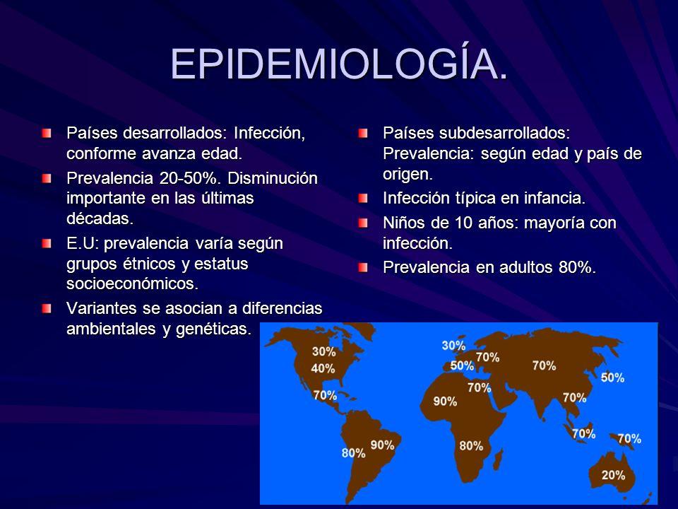 EPIDEMIOLOGÍA. Países desarrollados: Infección, conforme avanza edad. Prevalencia 20-50%. Disminución importante en las últimas décadas. E.U: prevalen