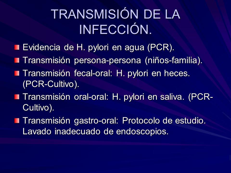 TRANSMISIÓN DE LA INFECCIÓN. Evidencia de H. pylori en agua (PCR). Transmisión persona-persona (niños-familia). Transmisión fecal-oral: H. pylori en h