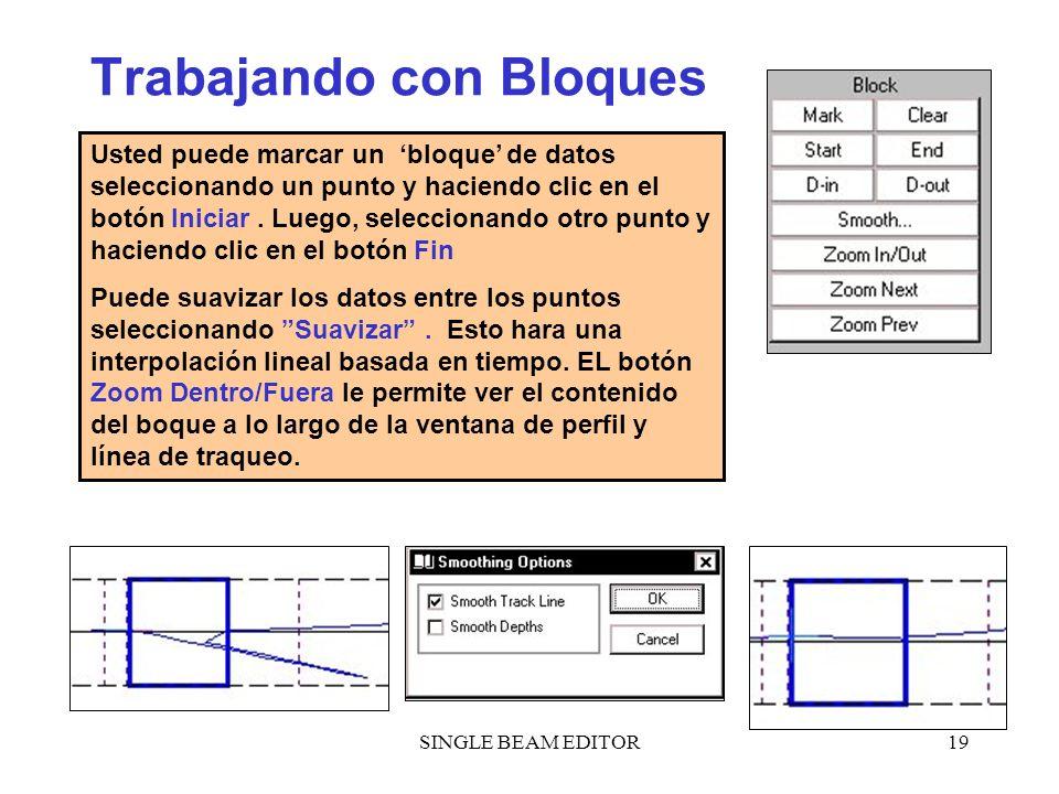 SINGLE BEAM EDITOR19 Trabajando con Bloques Usted puede marcar un bloque de datos seleccionando un punto y haciendo clic en el botón Iniciar. Luego, s