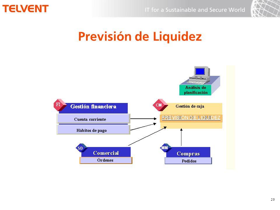 Previsión de Liquidez 29