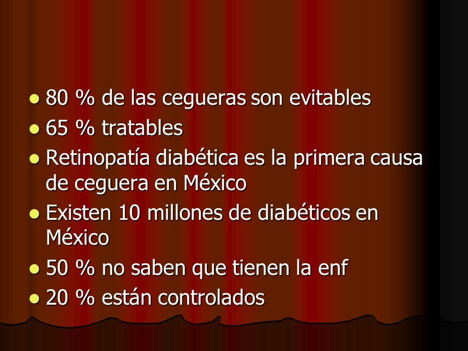 80 % de las cegueras son evitables 80 % de las cegueras son evitables 65 % tratables 65 % tratables Retinopatía diabética es la primera causa de cegue