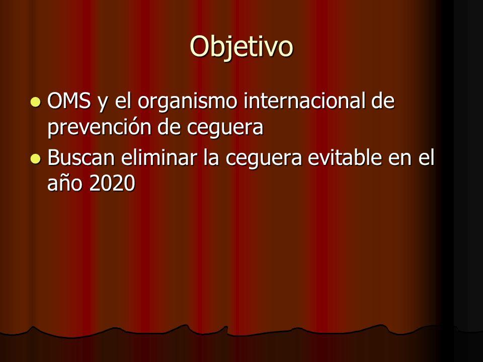 Objetivo OMS y el organismo internacional de prevención de ceguera OMS y el organismo internacional de prevención de ceguera Buscan eliminar la ceguer