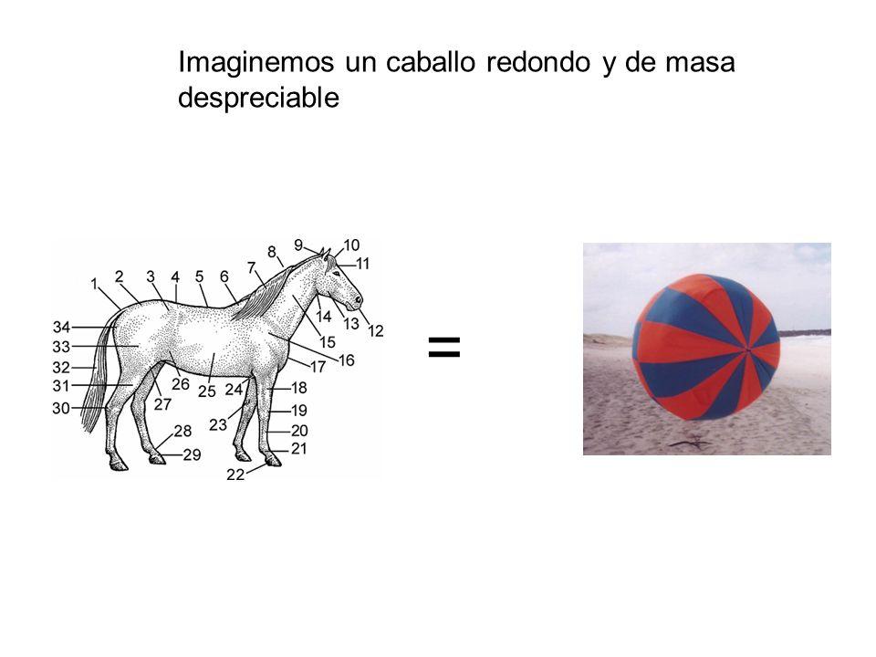 = Imaginemos un caballo redondo y de masa despreciable
