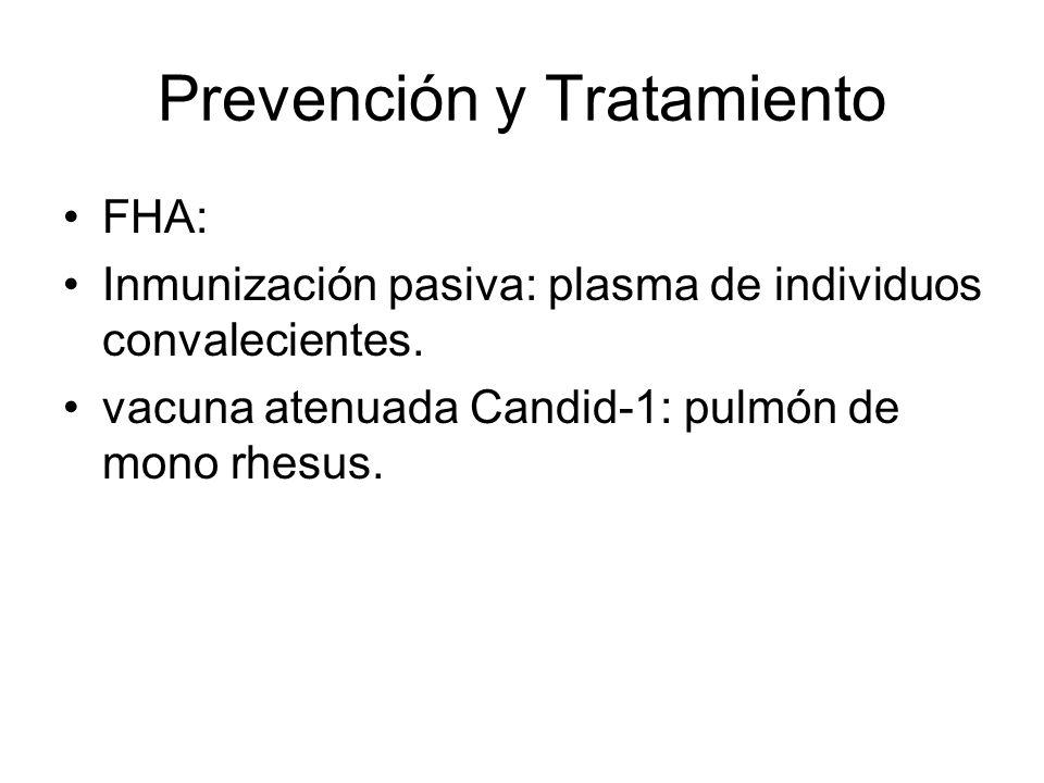 Prevención y Tratamiento FHA: Inmunización pasiva: plasma de individuos convalecientes. vacuna atenuada Candid-1: pulmón de mono rhesus.