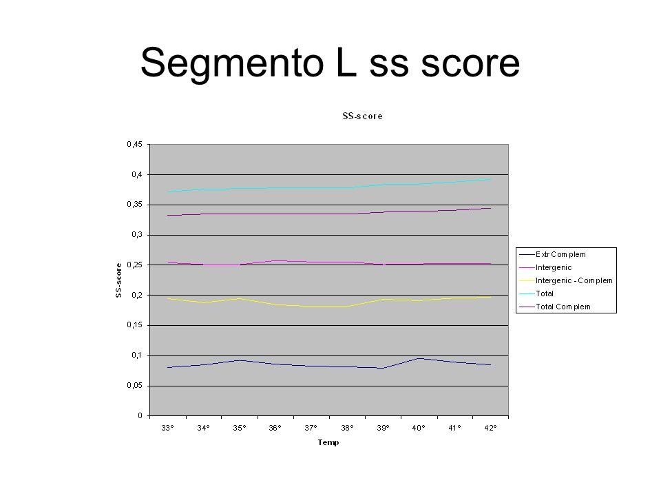 Segmento L ss score
