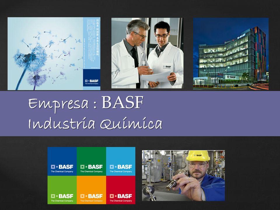 Empresa : BASF Industria Química