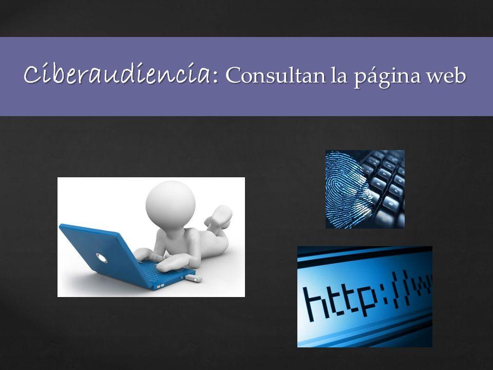 Ciberaudiencia: Consultan la página web
