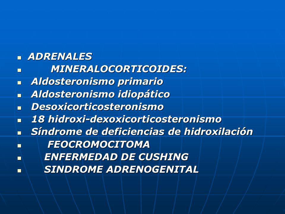 ADRENALES ADRENALES MINERALOCORTICOIDES: MINERALOCORTICOIDES: Aldosteronismo primario Aldosteronismo primario Aldosteronismo idiopático Aldosteronismo
