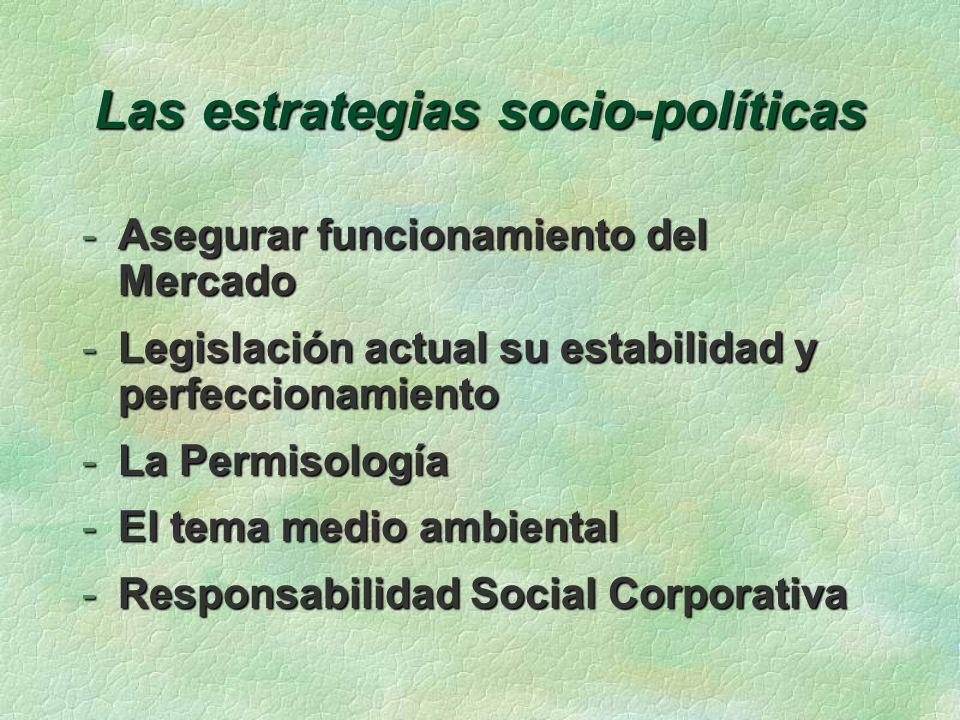 Las estrategias socio-políticas -Asegurar funcionamiento del Mercado -Legislación actual su estabilidad y perfeccionamiento -La Permisología -El tema medio ambiental -Responsabilidad Social Corporativa