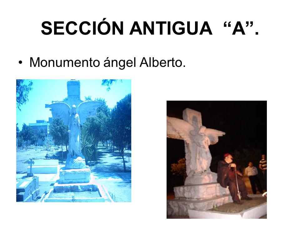 SECCIÓN ANTIGUA A. Monumento ángel Alberto.