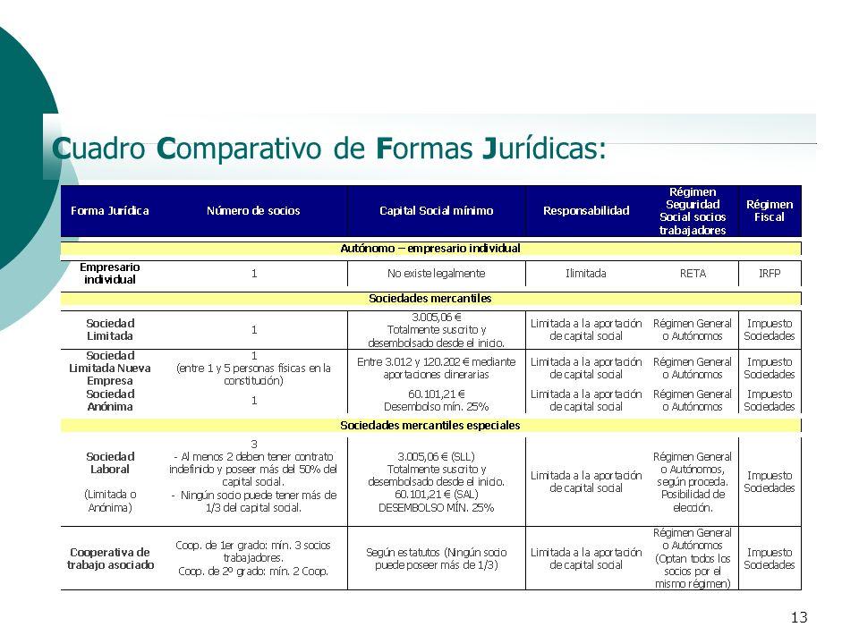 13 Cuadro Comparativo de Formas Jurídicas: