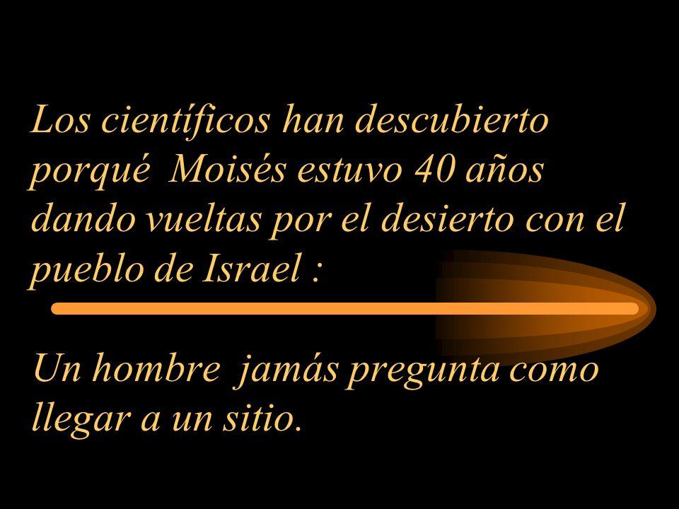 Los científicos han descubierto porqué Moisés estuvo 40 años dando vueltas por el desierto con el pueblo de Israel : Un hombre jamás pregunta como lle