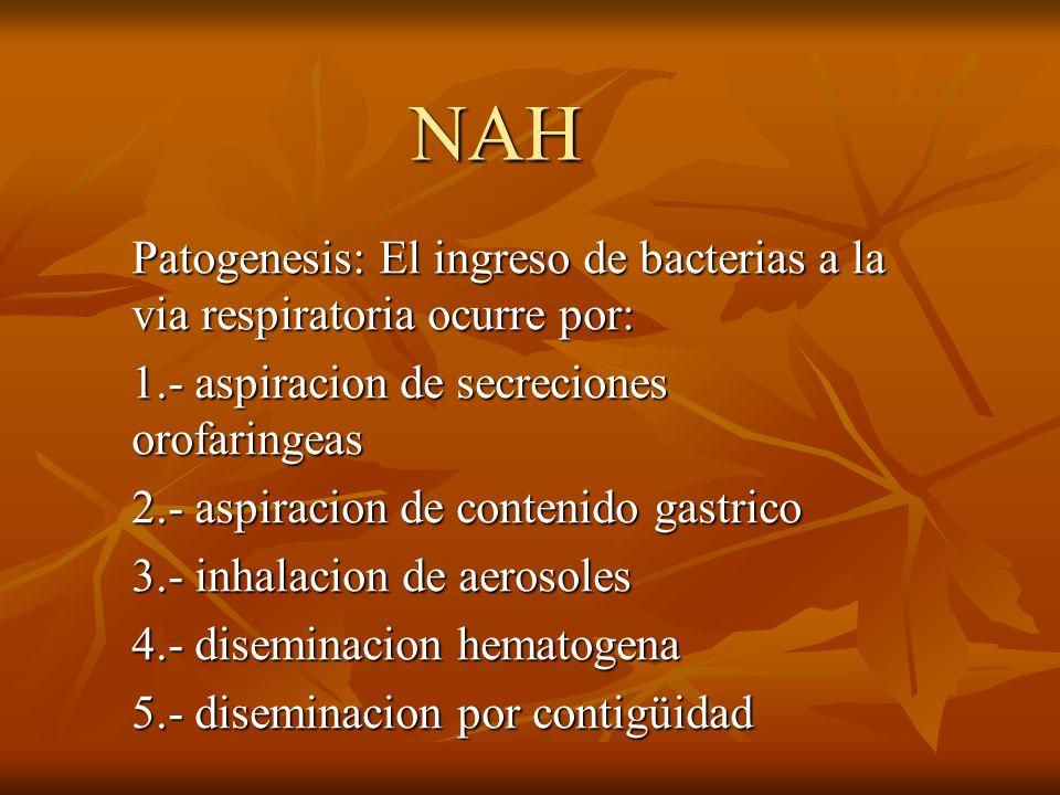 NAH Patogenesis: El ingreso de bacterias a la via respiratoria ocurre por: 1.- aspiracion de secreciones orofaringeas 2.- aspiracion de contenido gast