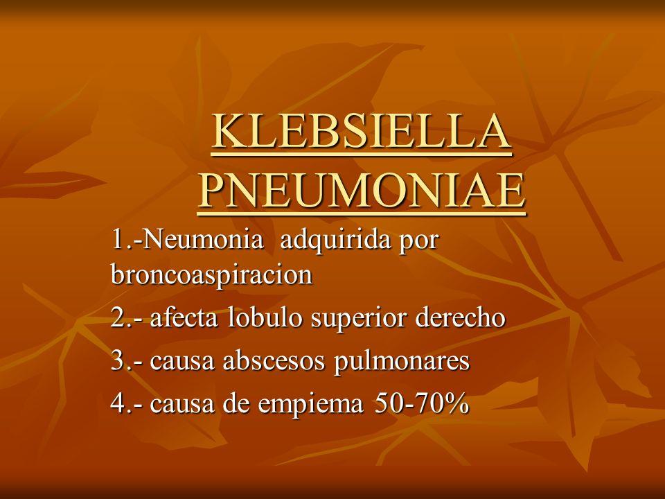 KLEBSIELLA PNEUMONIAE 1.-Neumonia adquirida por broncoaspiracion 2.- afecta lobulo superior derecho 3.- causa abscesos pulmonares 4.- causa de empiema
