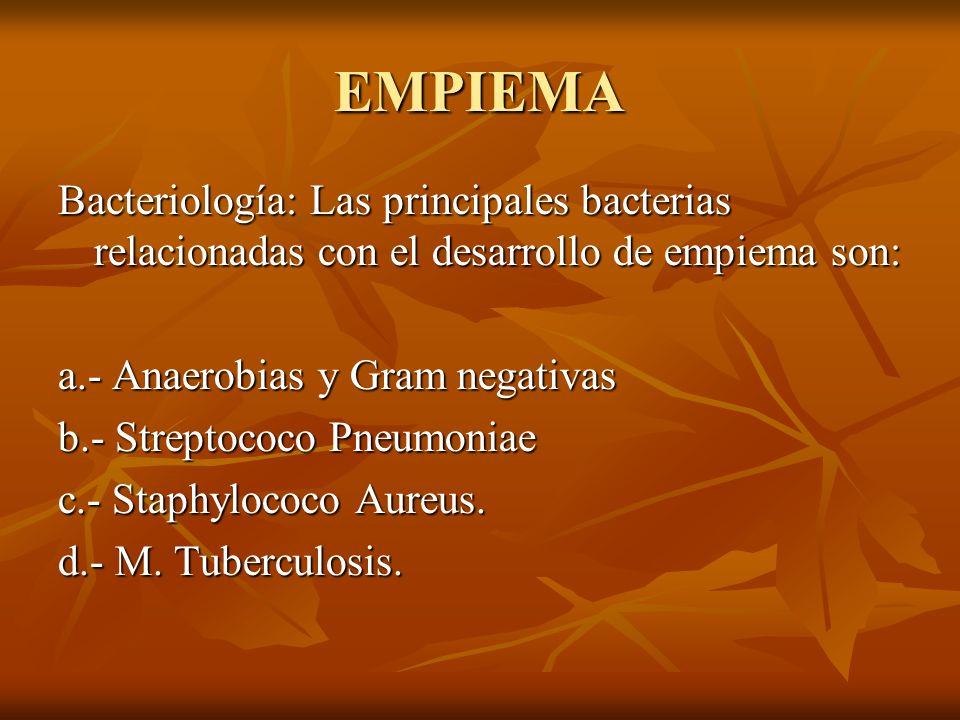 EMPIEMA Bacteriología: Las principales bacterias relacionadas con el desarrollo de empiema son: a.- Anaerobias y Gram negativas b.- Streptococo Pneumoniae c.- Staphylococo Aureus.