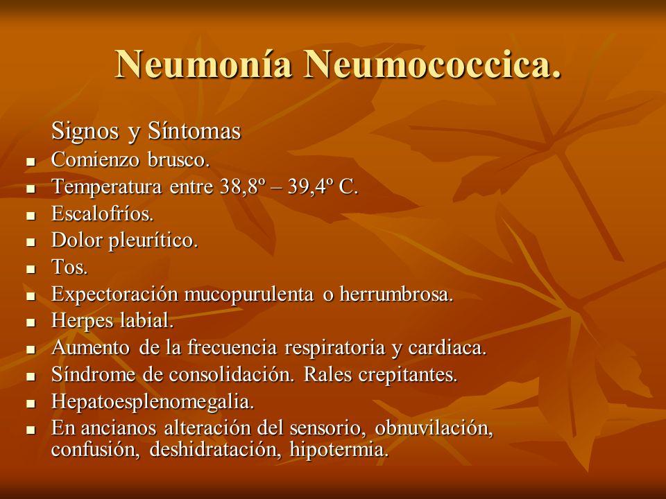Neumonía Neumococcica. Neumonía Neumococcica. Signos y Síntomas Comienzo brusco. Comienzo brusco. Temperatura entre 38,8º – 39,4º C. Temperatura entre