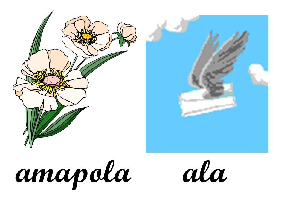 amapolaala