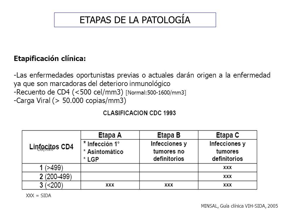 ETAPAS DE LA PATOLOGÍA Etapificación clínica: -Las enfermedades oportunistas previas o actuales darán origen a la enfermedad ya que son marcadoras del