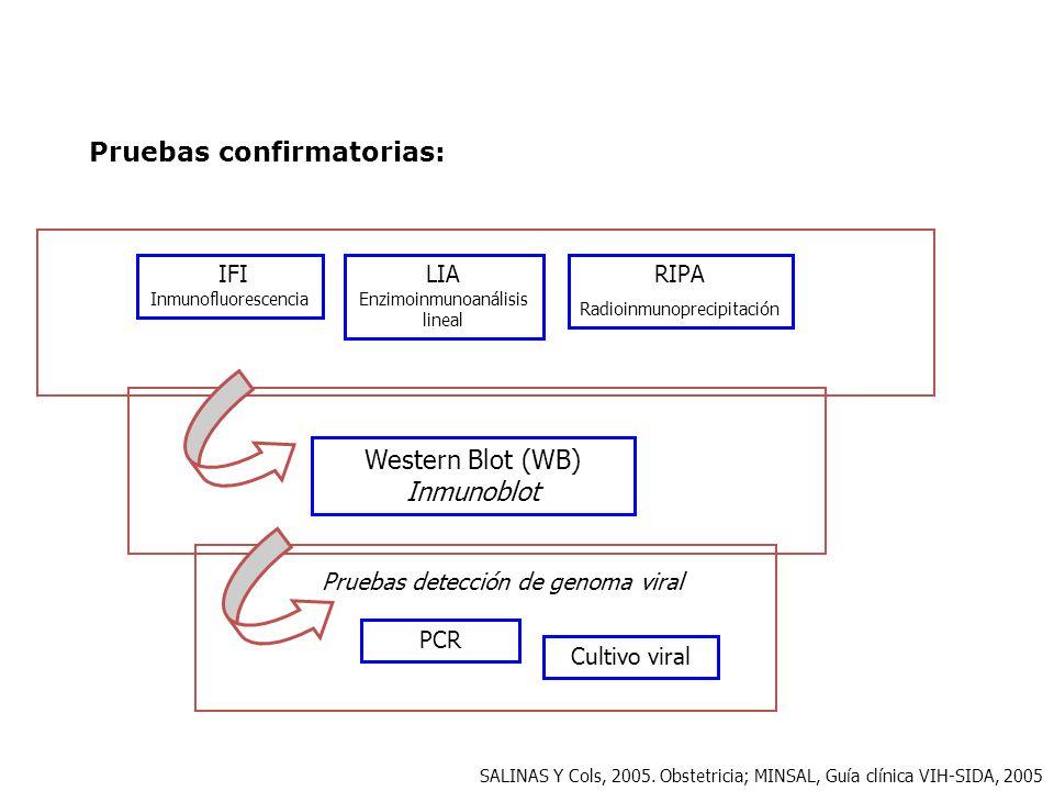 Pruebas confirmatorias: RIPA Radioinmunoprecipitación IFI Inmunofluorescencia LIA Enzimoinmunoanálisis lineal Western Blot (WB) Inmunoblot Cultivo vir