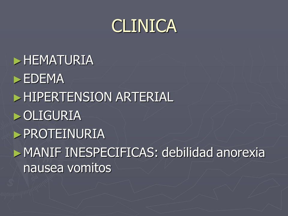 CLINICA HEMATURIA HEMATURIA EDEMA EDEMA HIPERTENSION ARTERIAL HIPERTENSION ARTERIAL OLIGURIA OLIGURIA PROTEINURIA PROTEINURIA MANIF INESPECIFICAS: deb