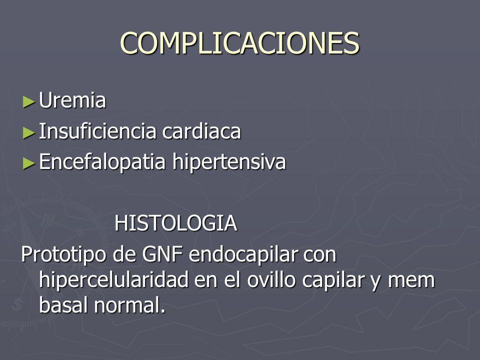 COMPLICACIONES Uremia Uremia Insuficiencia cardiaca Insuficiencia cardiaca Encefalopatia hipertensiva Encefalopatia hipertensiva HISTOLOGIA HISTOLOGIA