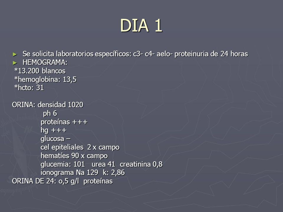 DIA 1 Se solicita laboratorios específicos: c3- c4- aelo- proteinuria de 24 horas Se solicita laboratorios específicos: c3- c4- aelo- proteinuria de 2