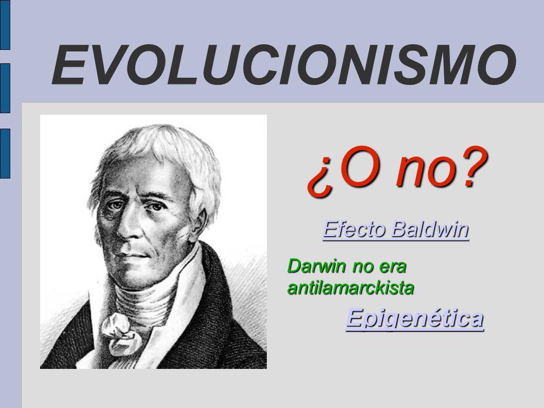 EVOLUCIONISMO ¿O no? Efecto Baldwin Efecto Baldwin Darwin no era antilamarckista Epigenética
