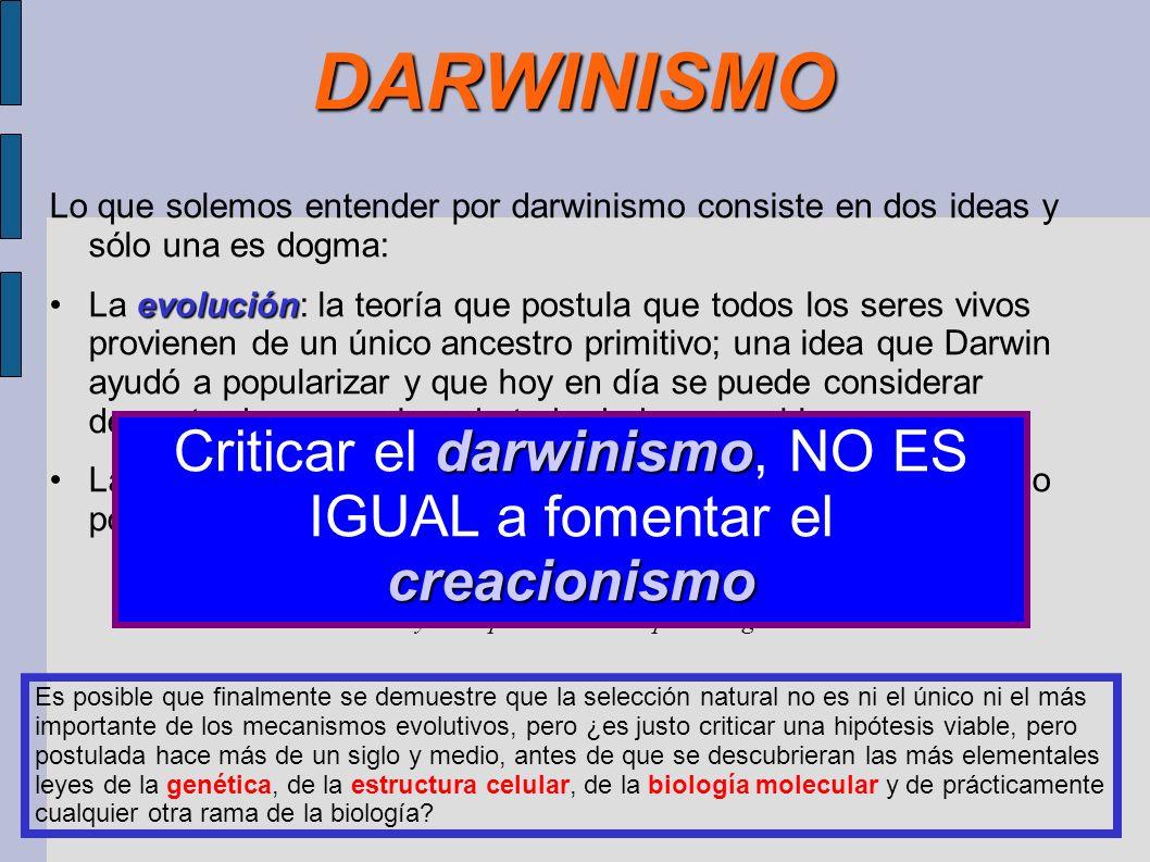 DARWINISMO Lo que solemos entender por darwinismo consiste en dos ideas y sólo una es dogma: evoluciónLa evolución: la teoría que postula que todos lo