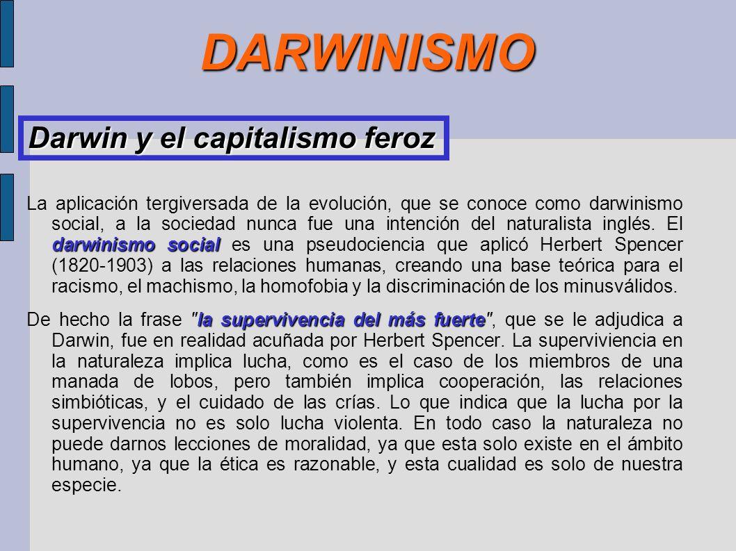 DARWINISMO darwinismo social La aplicación tergiversada de la evolución, que se conoce como darwinismo social, a la sociedad nunca fue una intención d