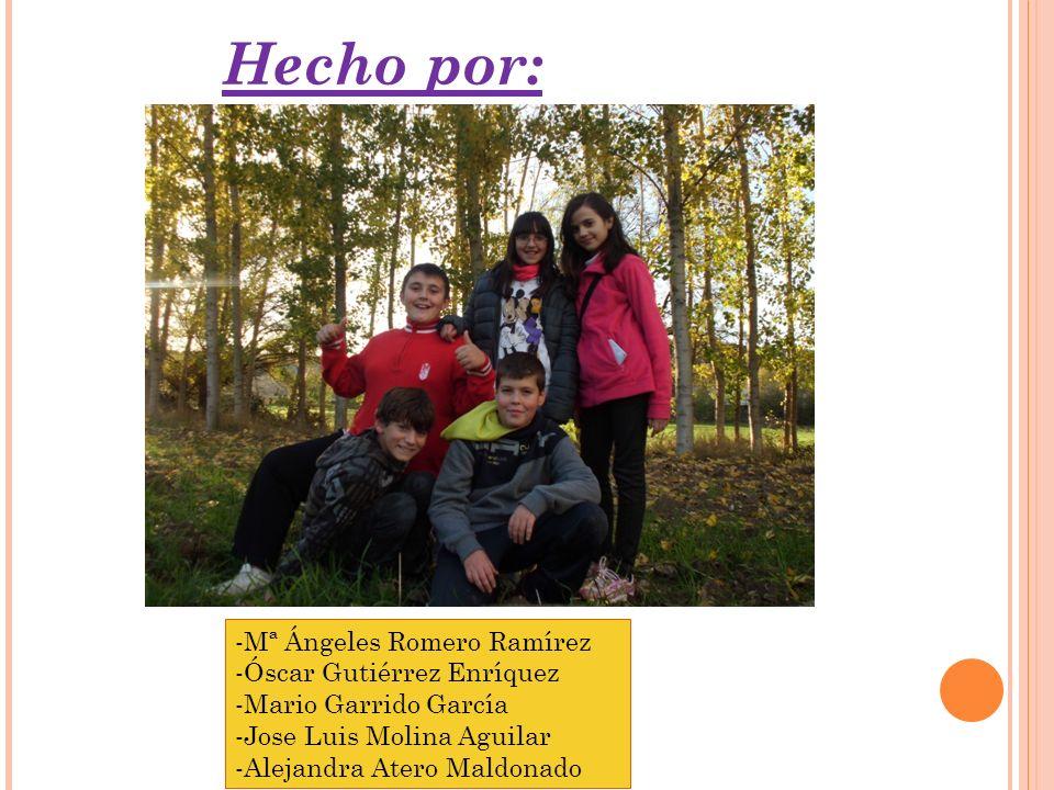 Hecho por: -Mª Ángeles Romero Ramírez -Óscar Gutiérrez Enríquez -Mario Garrido García -Jose Luis Molina Aguilar -Alejandra Atero Maldonado