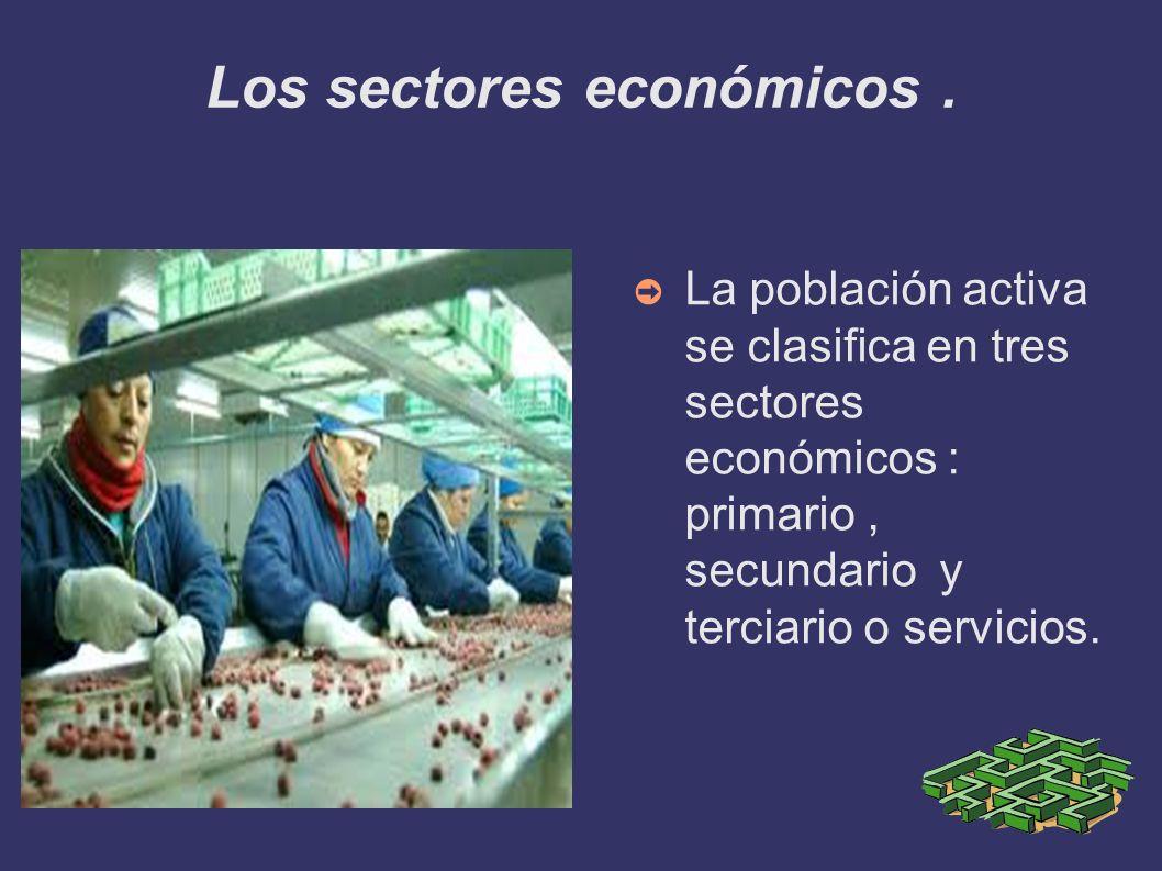 Los sectores económicos. La población activa se clasifica en tres sectores económicos : primario, secundario y terciario o servicios.