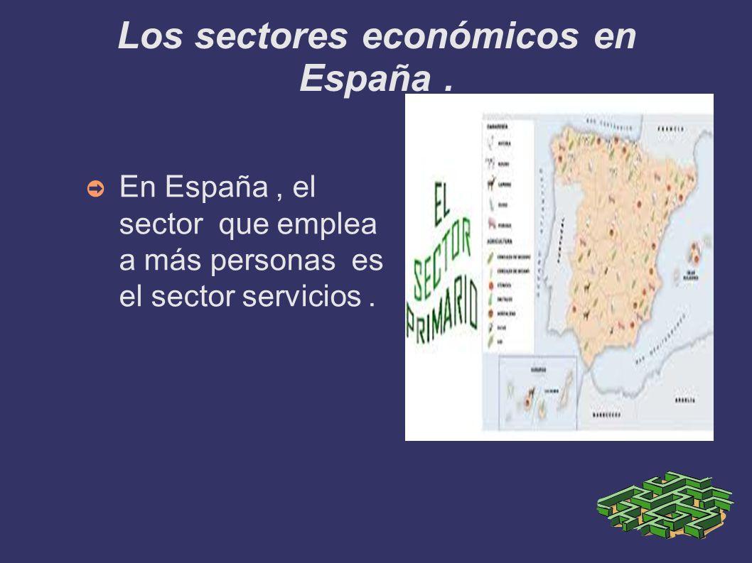 Los sectores económicos en España. En España, el sector que emplea a más personas es el sector servicios.