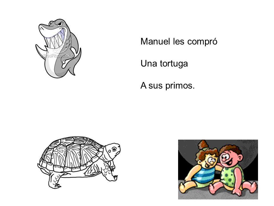 Manuel les compró Una tortuga A sus primos.