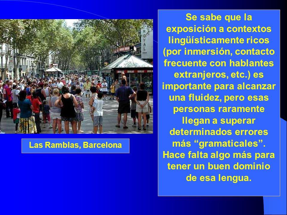 Se sabe que la exposición a contextos lingüísticamente ricos (por inmersión, contacto frecuente con hablantes extranjeros, etc.) es importante para al
