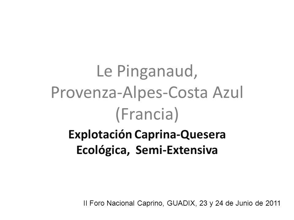 Le Pinganaud, Provenza-Alpes-Costa Azul (Francia) Explotación Caprina-Quesera Ecológica, Semi-Extensiva II Foro Nacional Caprino, GUADIX, 23 y 24 de J