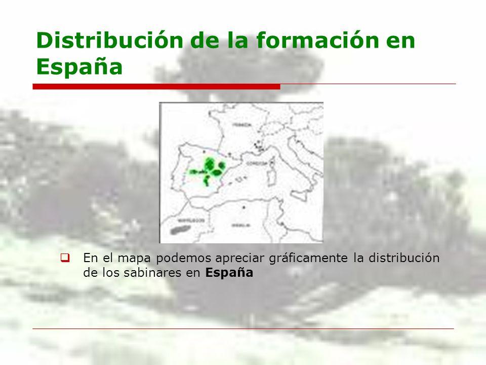 Distribución de la formación en España España cuenta con la representación más importante del mundo.