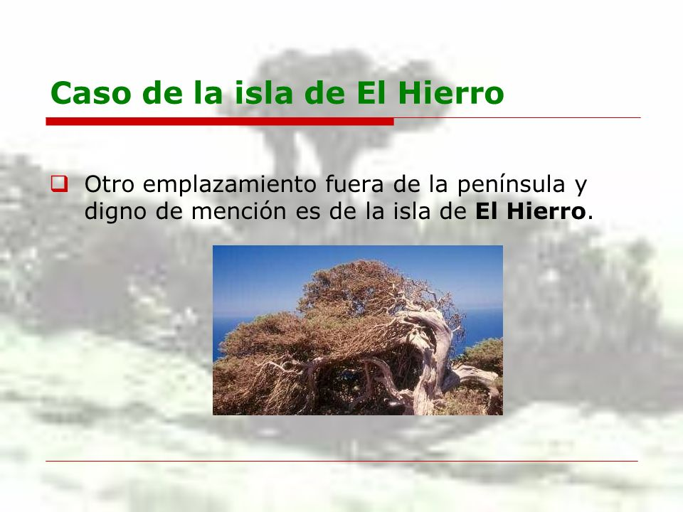Caso de la isla de El Hierro Otro emplazamiento fuera de la península y digno de mención es de la isla de El Hierro.