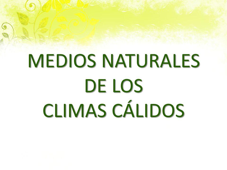 MEDIOS NATURALES DE LOS CLIMAS CÁLIDOS