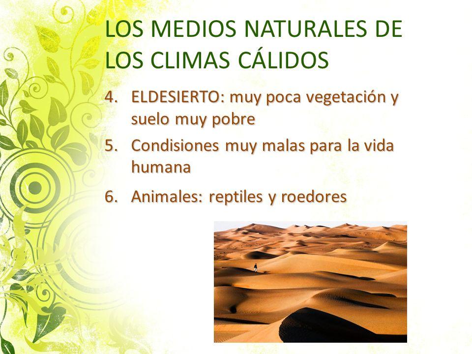 LOS MEDIOS NATURALES DE LOS CLIMAS CÁLIDOS 4.ELDESIERTO: muy poca vegetación y suelo muy pobre 5.Condisiones muy malas para la vida humana 6.Animales: