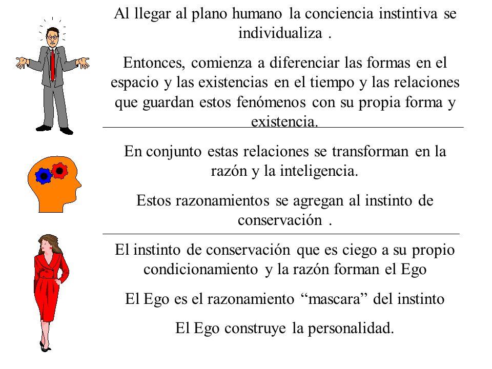 Al llegar al plano humano la conciencia instintiva se individualiza. Entonces, comienza a diferenciar las formas en el espacio y las existencias en el